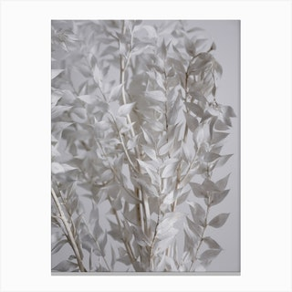 White Sunny Leafs Canvas Print