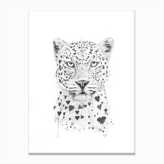 Lovely Leopard Canvas Print