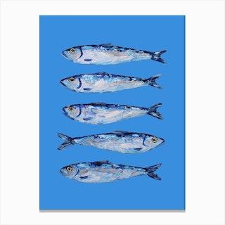 Sardines On Blue Canvas Print