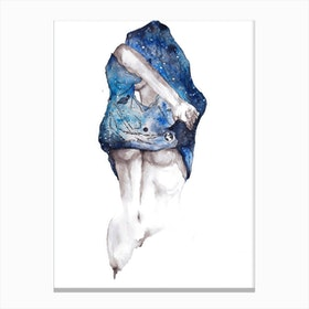 Universe I Canvas Print