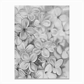The Essence Of Spring Black Canvas Print