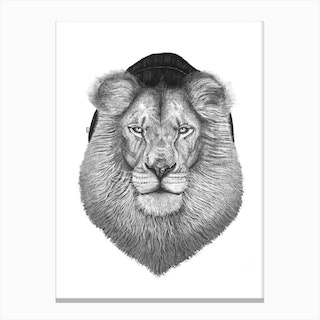 Lion In Hat Canvas Print