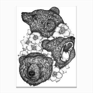 Bears In Bears Canvas Print