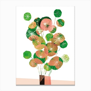 Pilea In Green And Coral Canvas Print