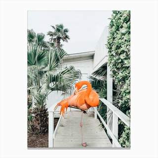 Flamingo Beach House Canvas Print