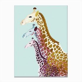 Giraffes in Mint Canvas Print