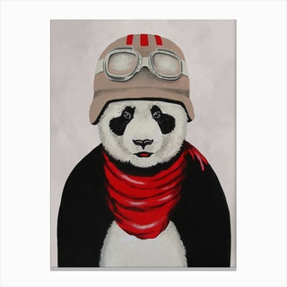 Panda Vintage Pilot Canvas Print