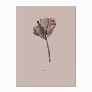 Botanico II Canvas Print