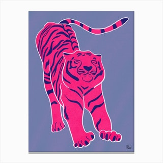 Tiger Doesnt Lose Sleep Pink And Blue Canvas Print