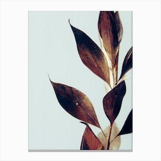 Gold Plant Branch Canvas Print