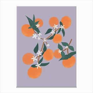 Oranges Purple Canvas Print