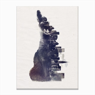Fox From The City Canvas Print