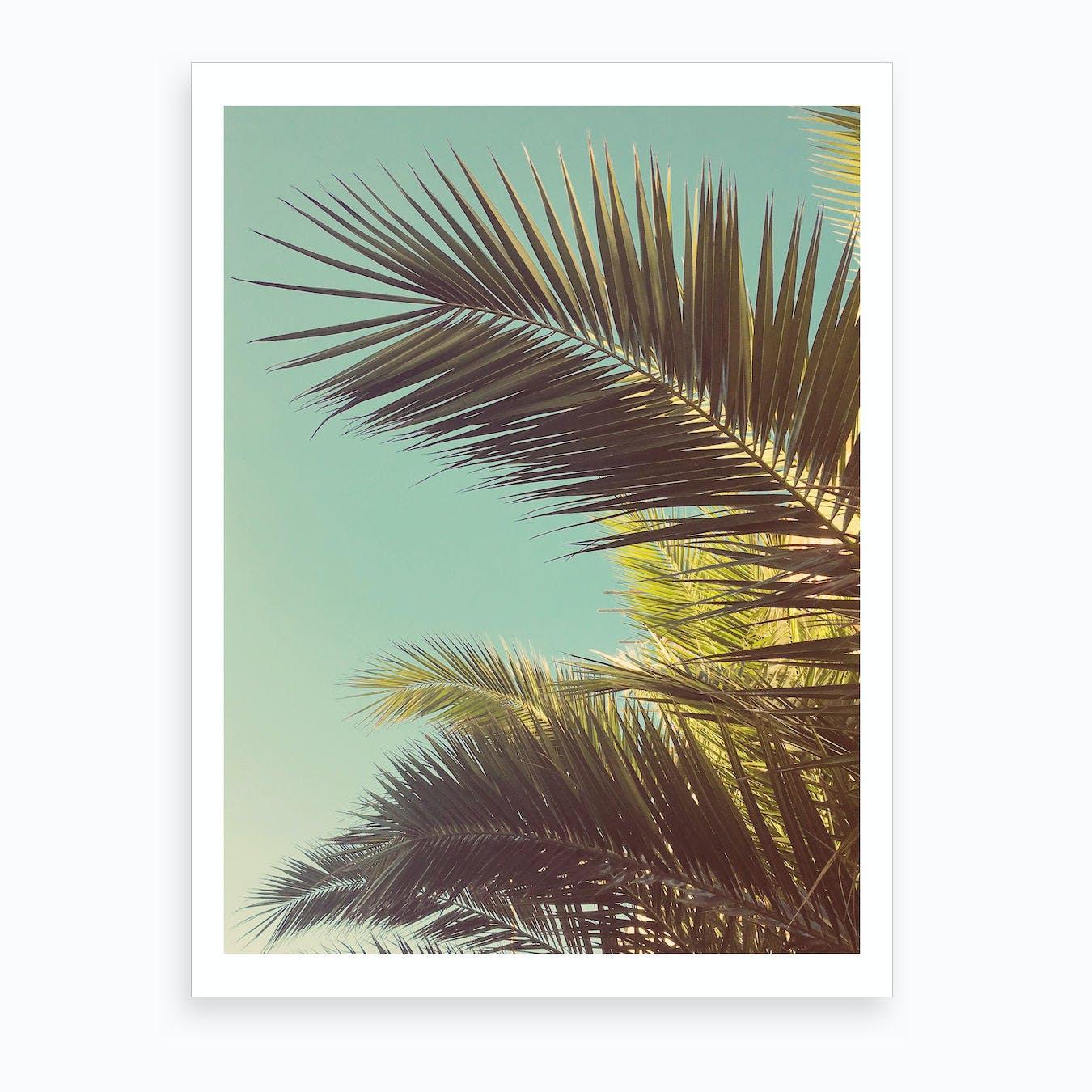 Autumn Palms Print