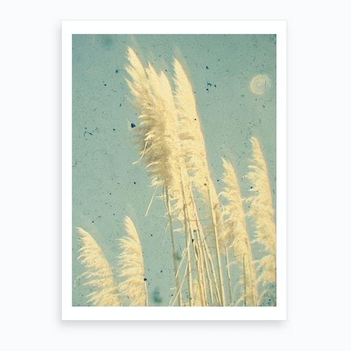 Breeze Print