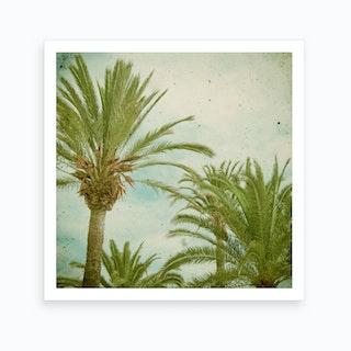 Palm Trees Art Print I