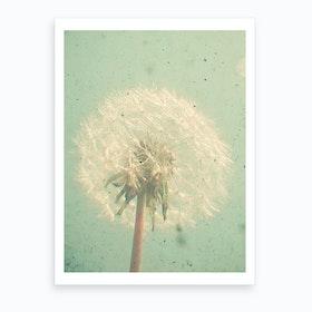 Dandelion Clock Print