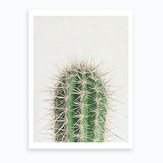 Cactus Art Print I
