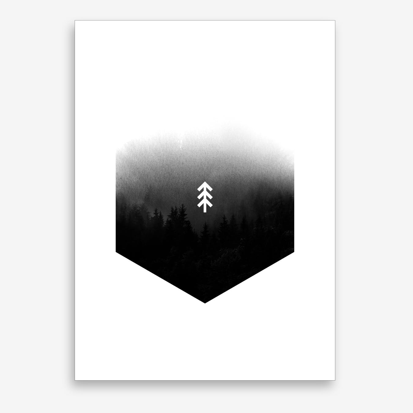 Forest Hex