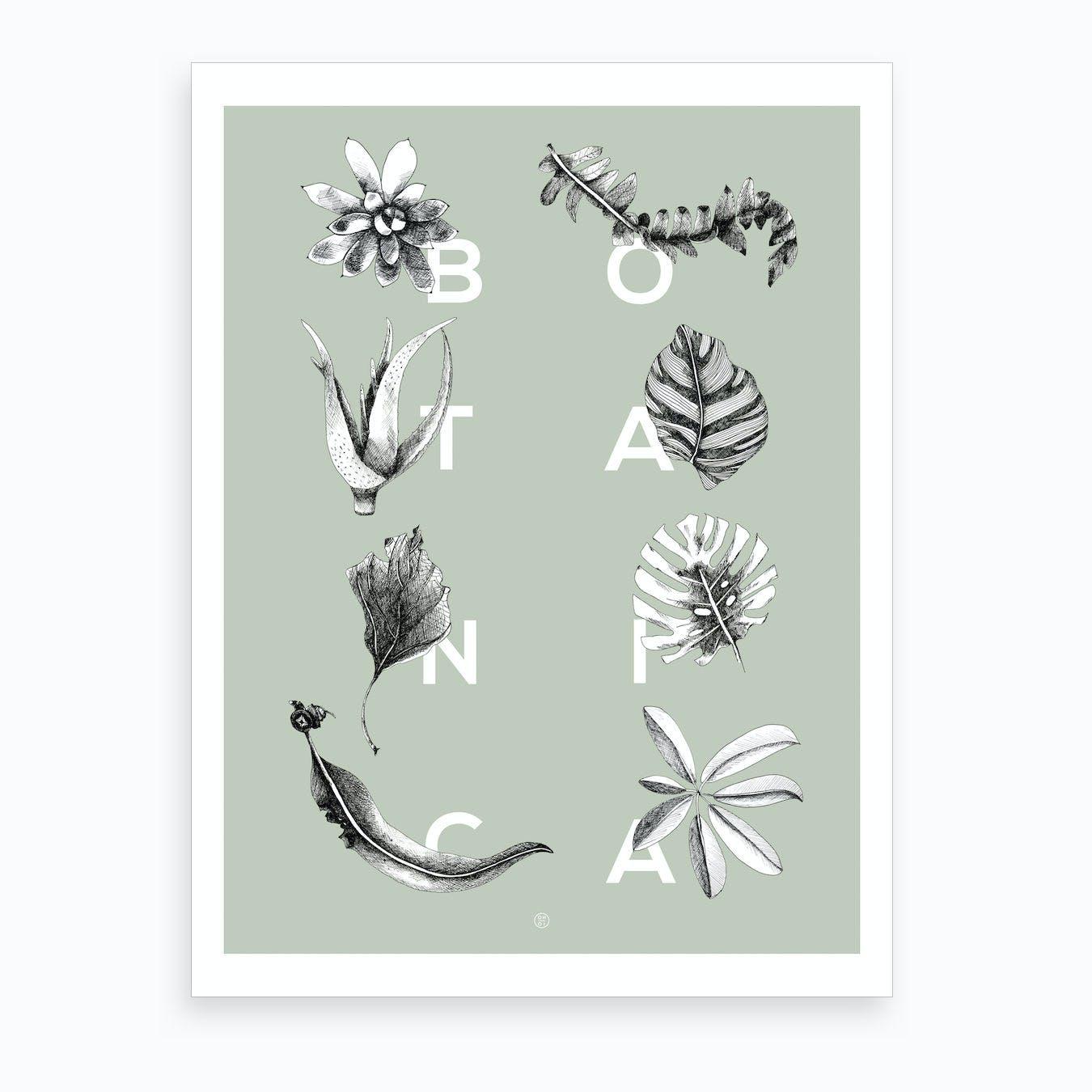 Botanica Letters Mint Art Print