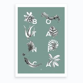 Botanica Letters Seagreen Art Print