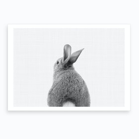 Rabbit Tail BW I Art Print