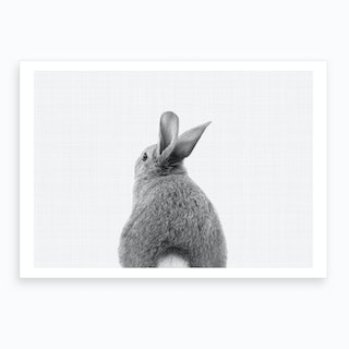 Rabbit Tail BW I Art Print