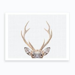 Deer I Art Print
