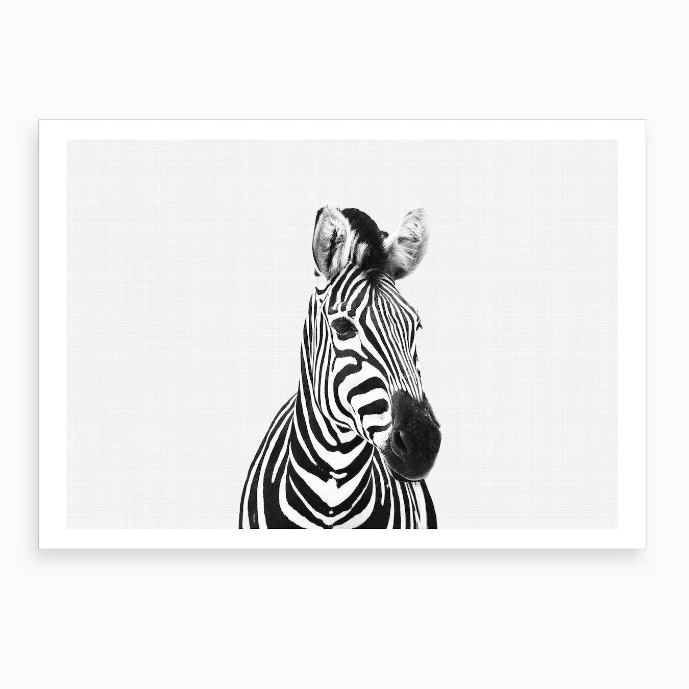 Zebra BW I Art Print