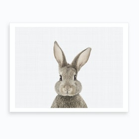 Rabbit I Art Print