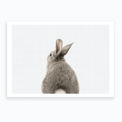 Rabbit Tail I Art Print