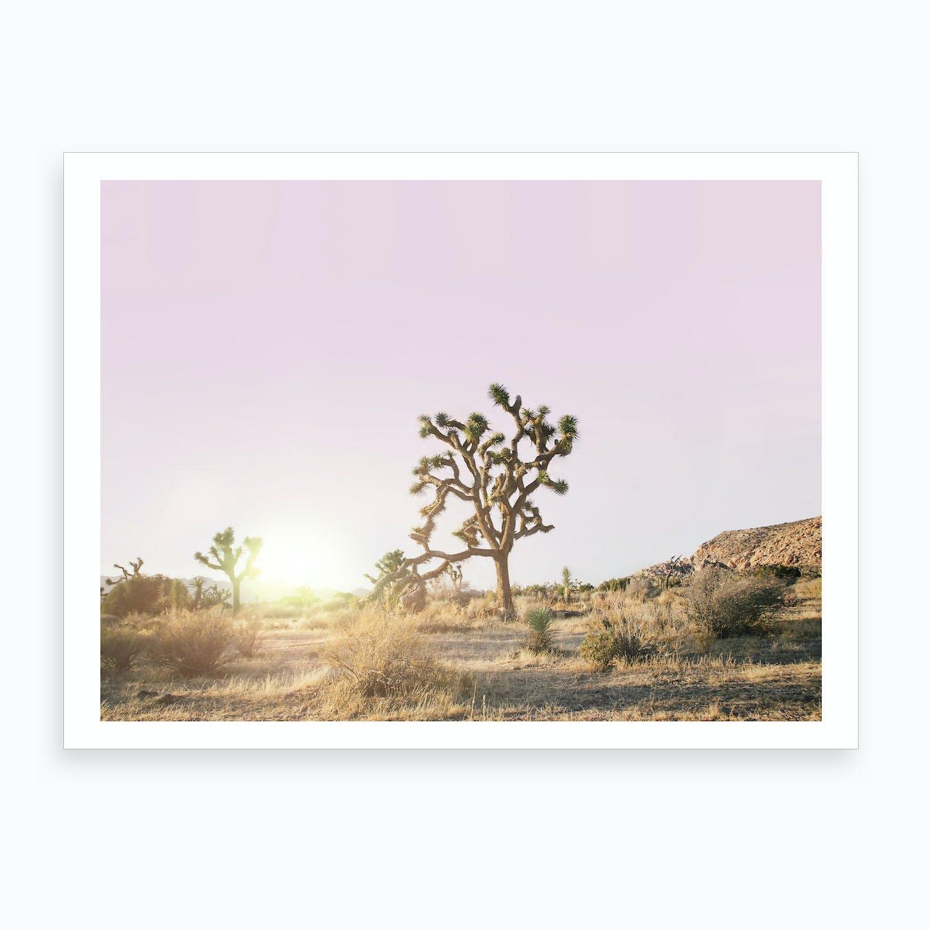 Desert Sunset II Art Print