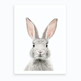 Bunny Face Art Print