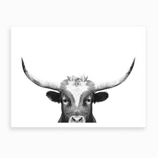 Longhorn BW Art Print