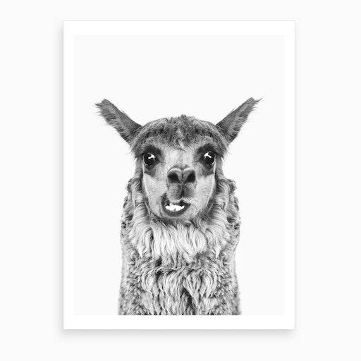 Happy Llama BW Art Print