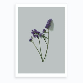 Violet Little Flowers I Art Print
