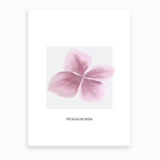 Pink Petals & Grey Box Art Print