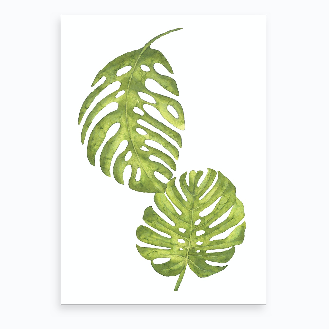 Two Green Floral Leafs Art Print By Pixy Paper Fy