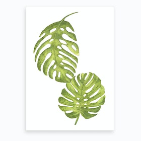 Two Green Floral Leafs Art Print