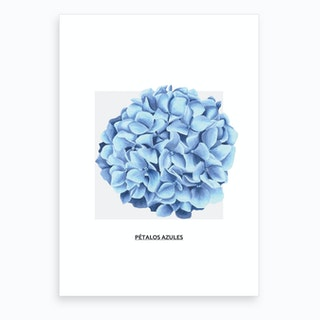 Blue Ball Flower & Grey Box Art Print