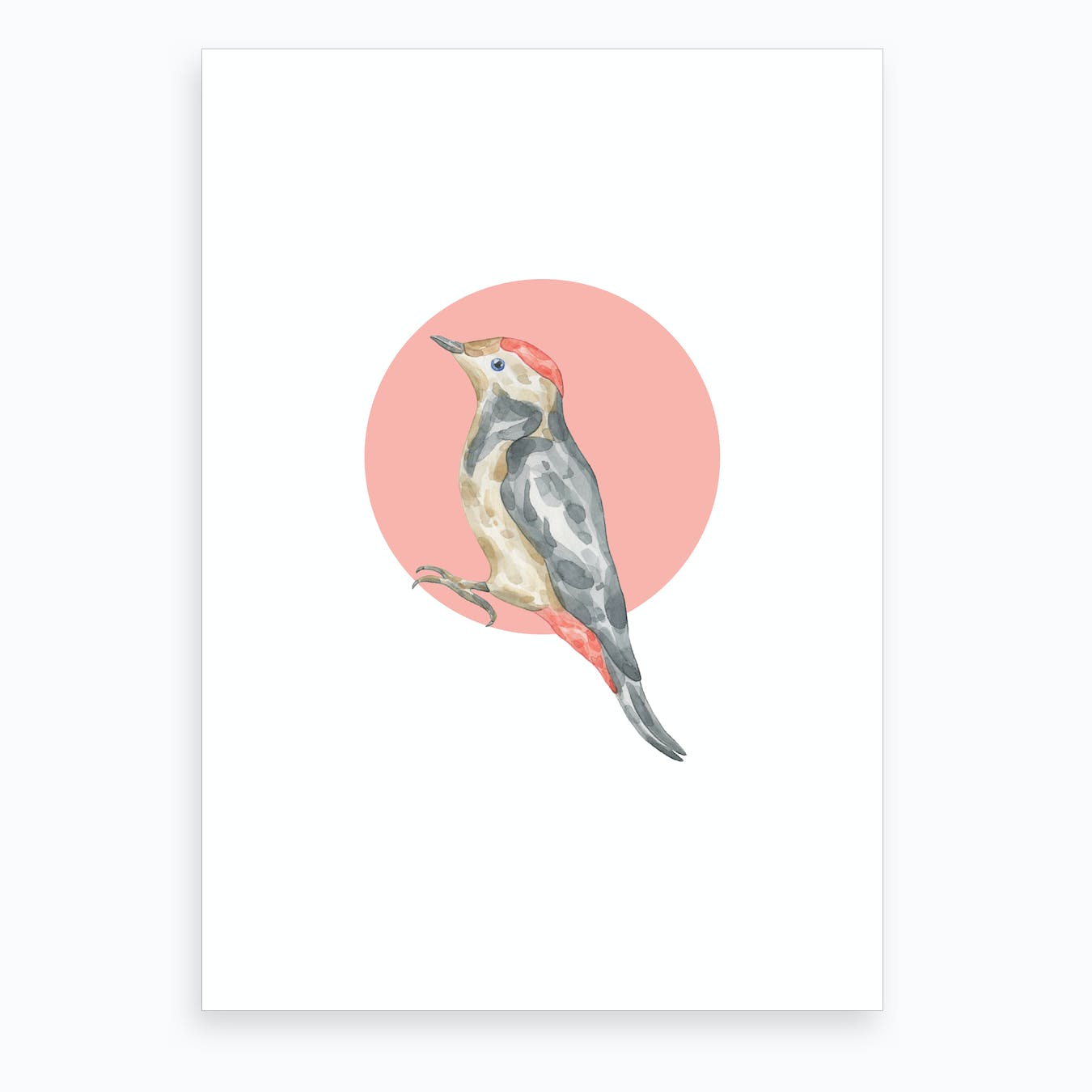 Watercolour Bird with Bird Art Print