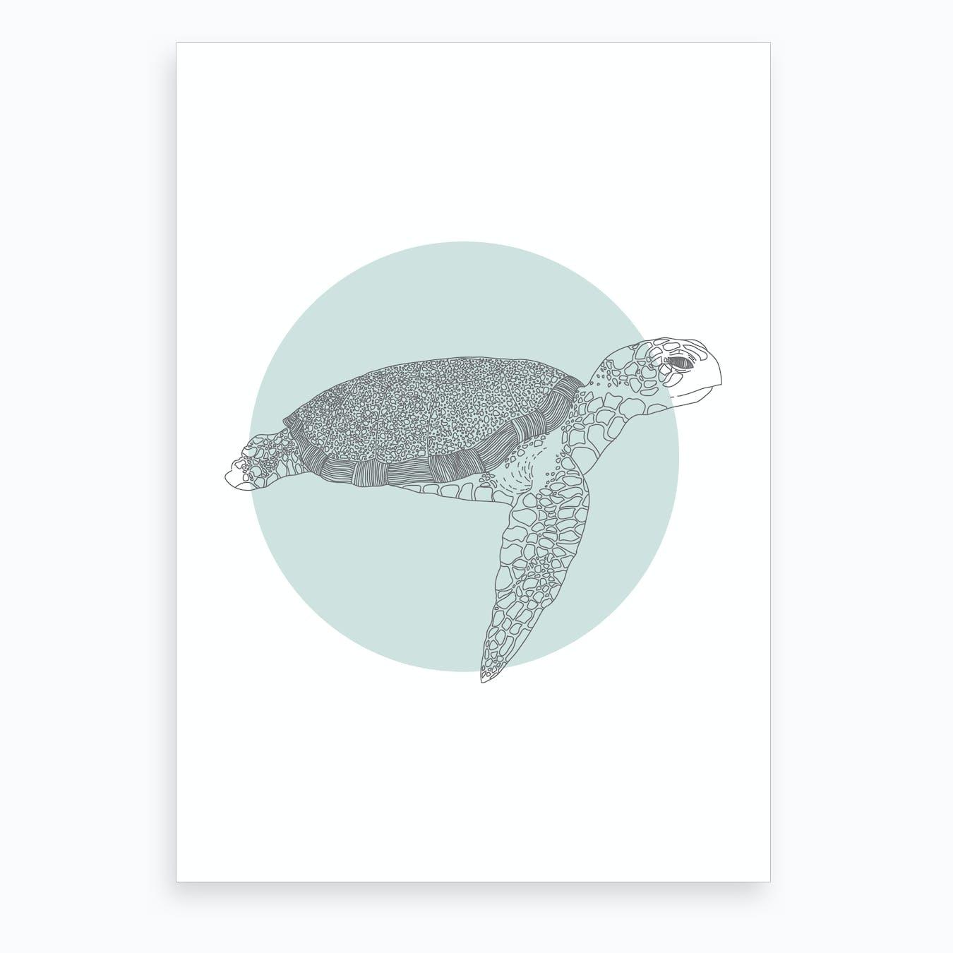 Marine Circle & Turtle Art Print