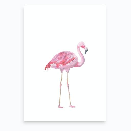 Pink Watercolour Flamingo Art Print
