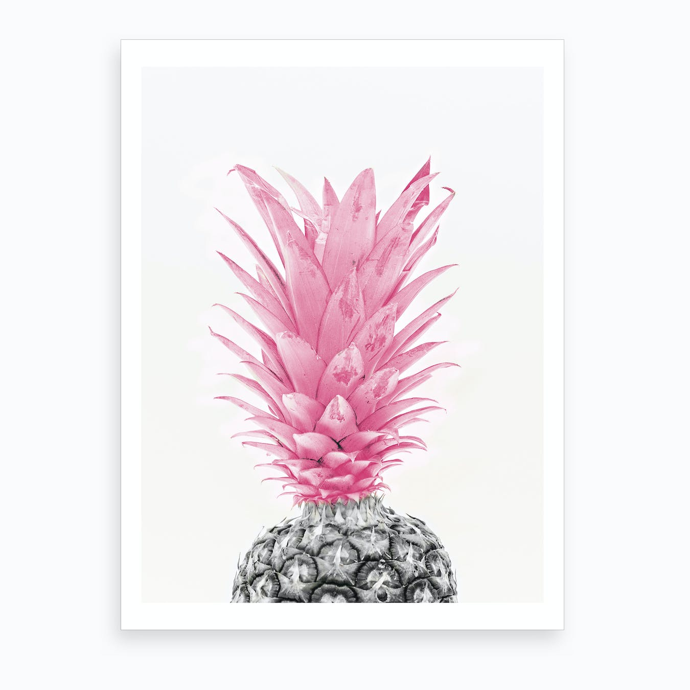 Black & White Pineapple With Pink Art Print