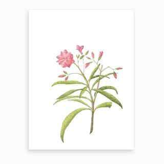 Pink Floral Watercolour Rose Art Print