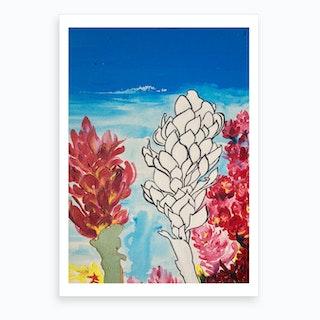 Alpinia Purpurata Red Ginger Flower Art Print