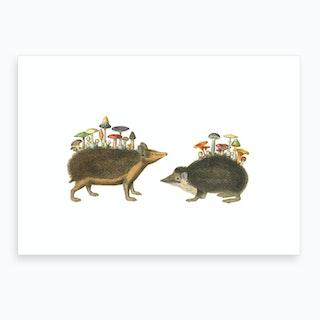 Hedgehogshrooms Art Print