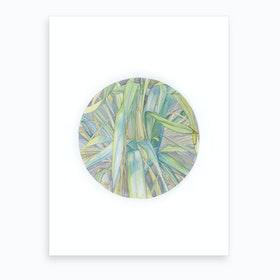Grasses In The Late Summer Light Art Print