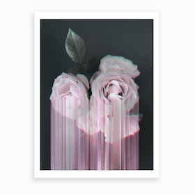Fall In Rose Art Print