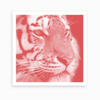 Tiger Pastel Red Square Art Print