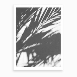 Leaves Shadow Black And White Art Print